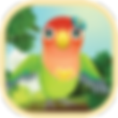 AppIcon_Birdbnb.png