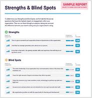 Strenghts Blind Spots2.png