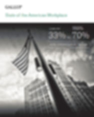 GallupReport.jpg
