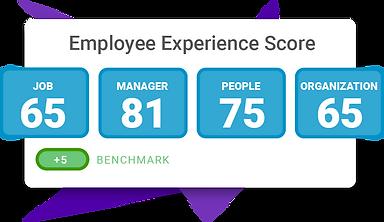 Employee-XP-Score.png