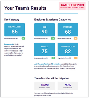 Diagnose Team Report.png