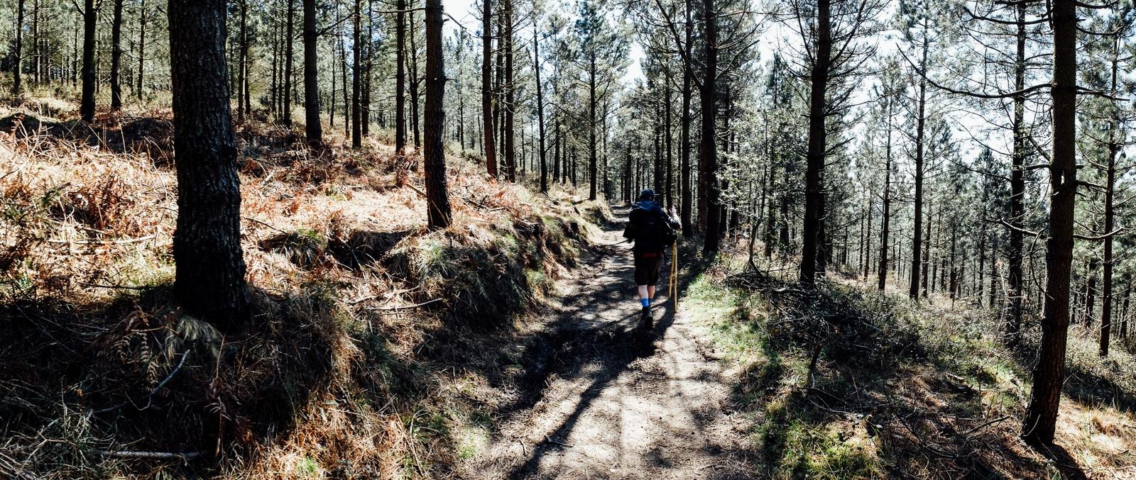 Jakobsweg - Camino del Norte (91)