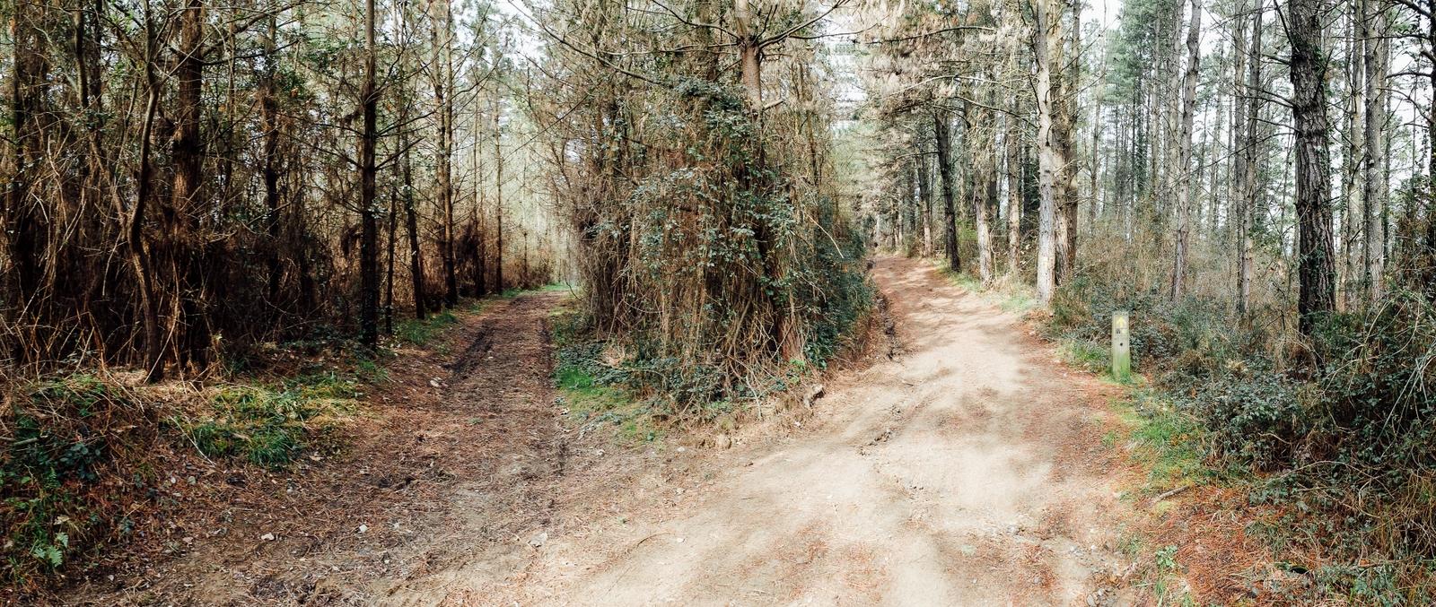 Jakobsweg - Camino del Norte (123)
