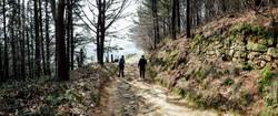 Jakobsweg - Camino del Norte (30)