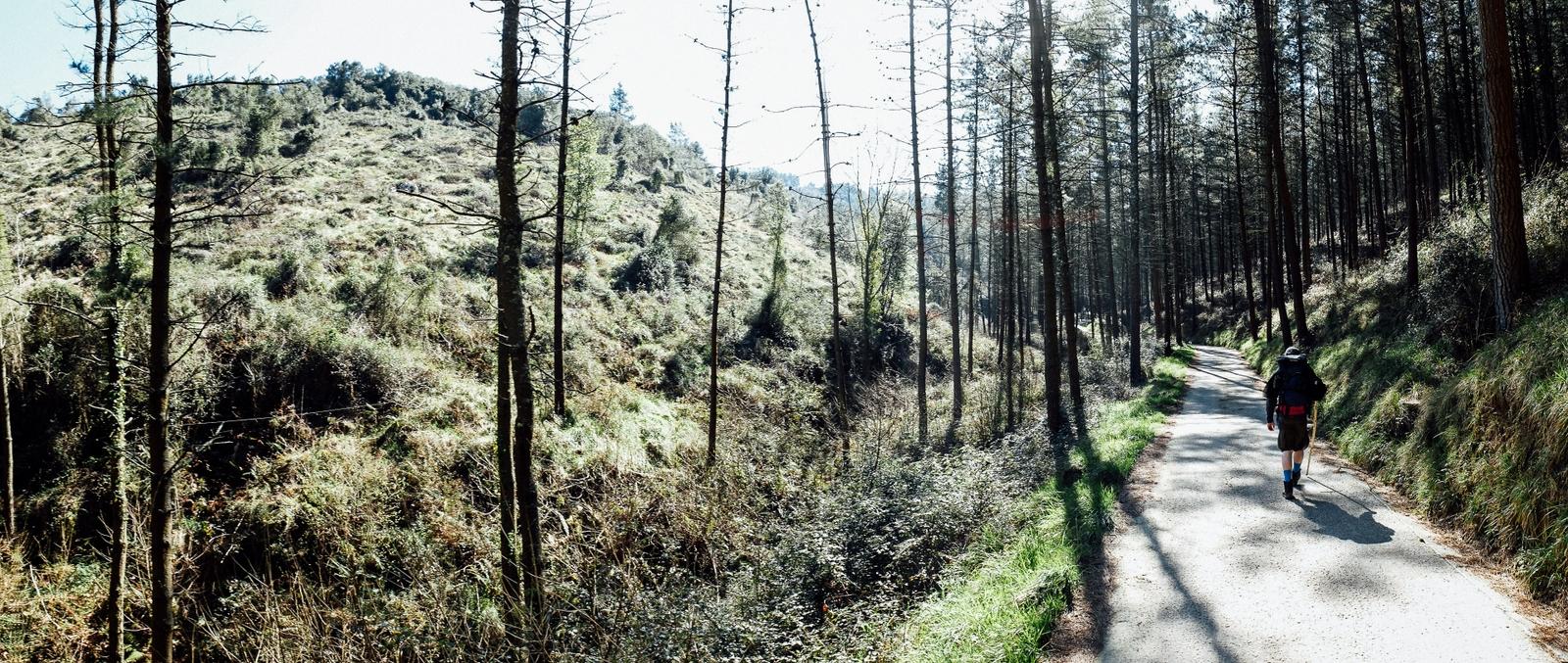Jakobsweg - Camino del Norte (89)