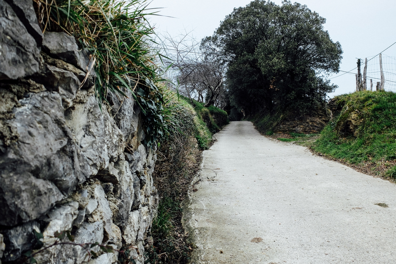 Jakobsweg - Camino del Norte (66)