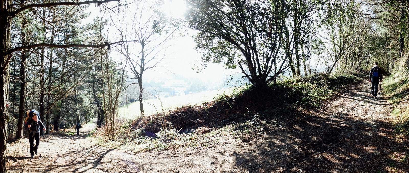 Jakobsweg - Camino del Norte (80)