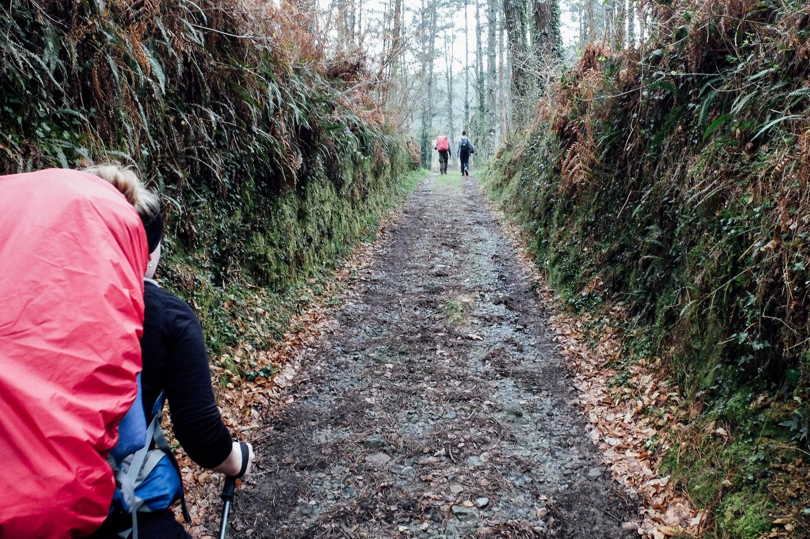 Jakobsweg - Camino del Norte (103)