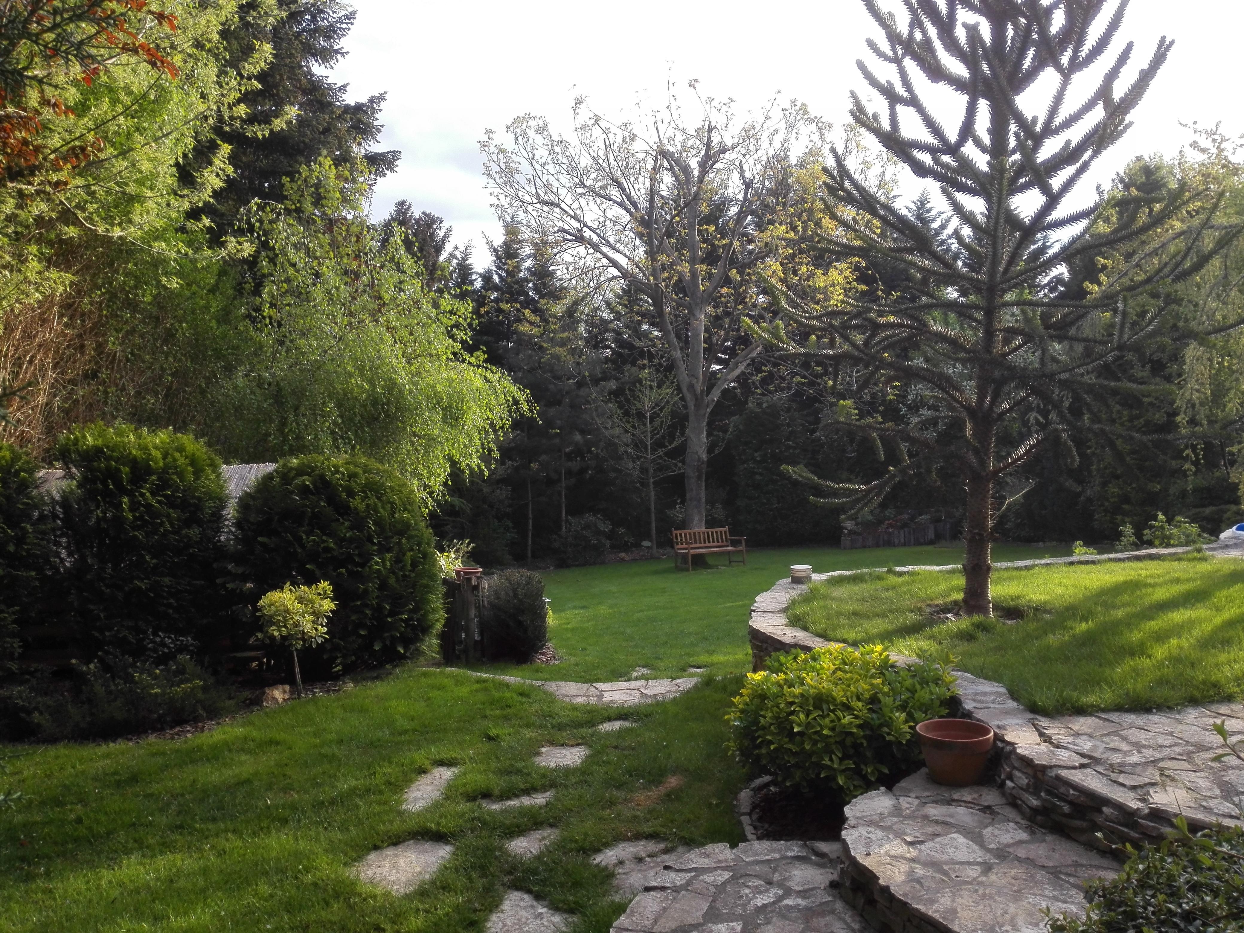 Tájképi kert