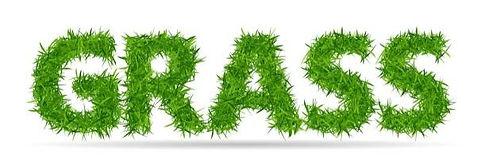 grass%20word_edited.jpg