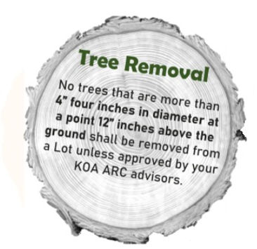 tree%20removal_edited.jpg