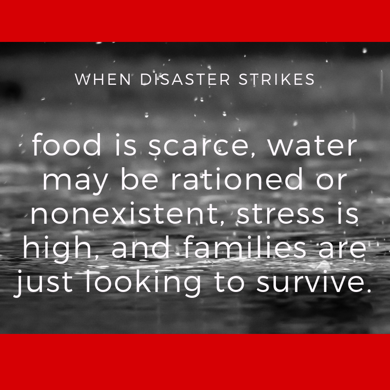 """black and white photo of rain falling on red background with the words """"When disaster strikes, food is scarce, water may be rationed or nonexistent, stress is high, and families are just looking to survive."""""""