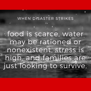 "black and white photo of rain falling on red background with the words ""When disaster strikes, food is scarce, water may be rationed or nonexistent, stress is high, and families are just looking to survive."""
