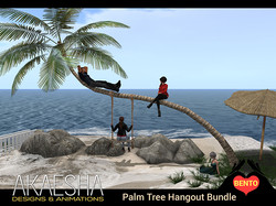 Palm Tree Hangout 1_sm