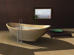 Nishi Bath