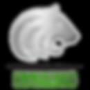 Silver Tiger Consulting Logo
