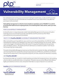 Vulnerability-Datasheet_thumbnail.jpg