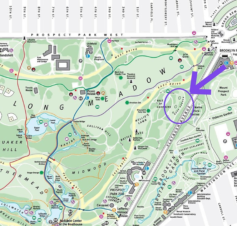 Prospect-Park-Map_Purple.jpg