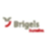 Skiorte_AFS-2019_brigels.png