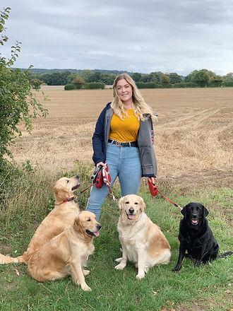 Alton dog walking service