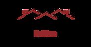 Ancient & Modern Logo.png