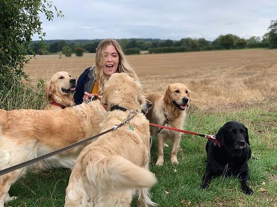 Alton Group Dog Walking