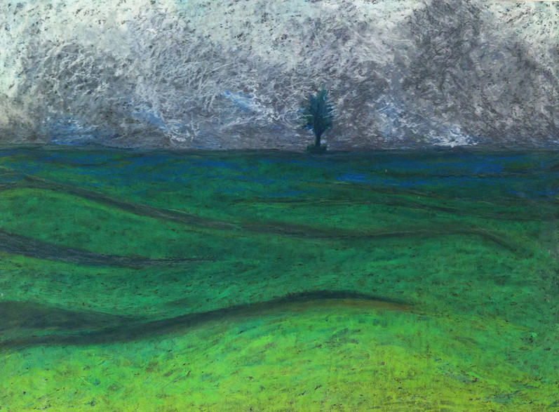 The Lonely Tree, 2013, oil pastels on paper,35x50 cm