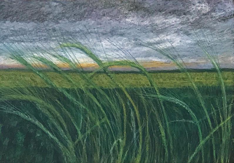 Habonim, 2017, oil pastels on paper, 50x70 cm