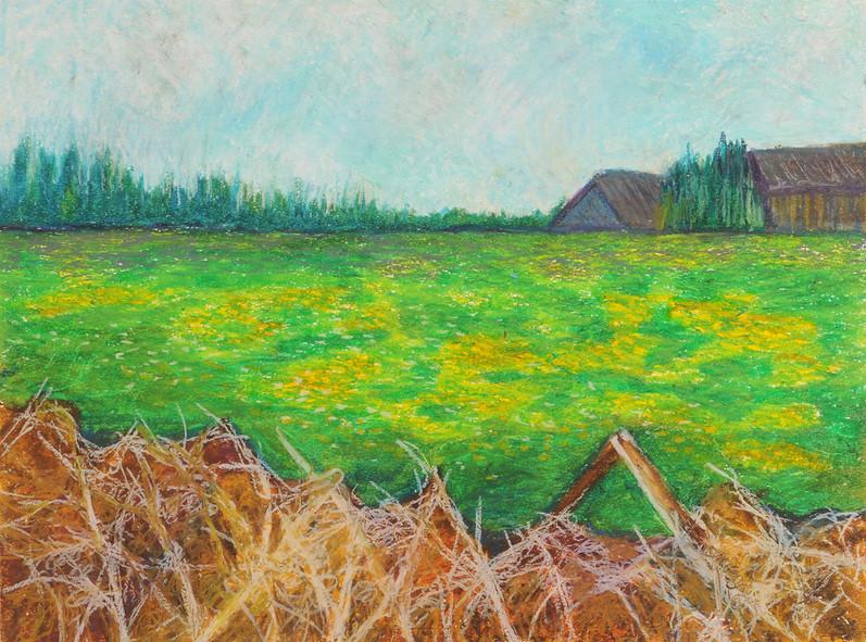 Darazac, 2013, oil pastels on paper, 35x50 cm