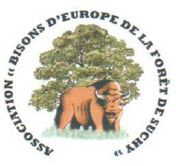 Arrivée des Bisons d'Europe dans la première Cellule de conservation génétique UICN-European Bison S