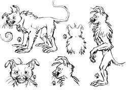 Male Marsupilami linework