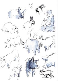 dierendagkrabbels7