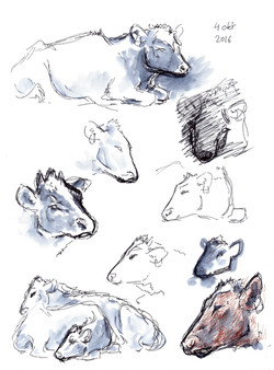 dierendagkrabbels6