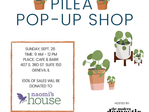 Plant Pop Up Shop at Cafe & Barr in Geneva, IL