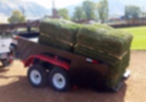 Haulit Deliveryman Trailer Idaho