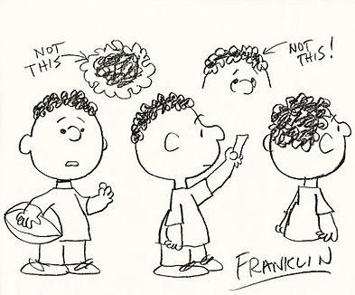 Franklin_01.jpg