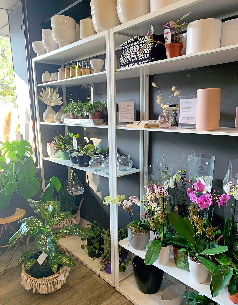 May Flowers Floral Co flowers and plants shop