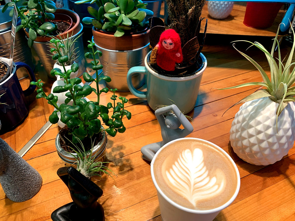 Latte art and succulents at Everyday Gourmet Toronto St Lawrence Market