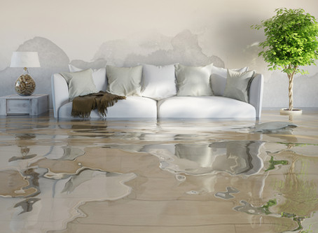 Avoid Costly Water Damage