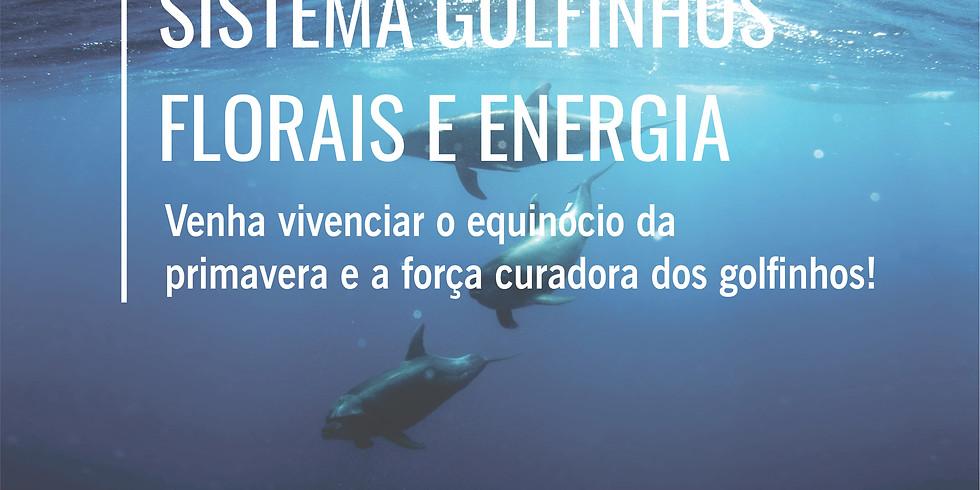 Palestra: Sistema Golfinhos Florais e Energia