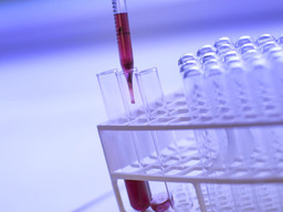 Drug Development and Manufacturing Taxonomy Updates