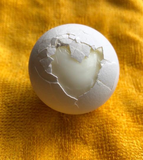Heart of egg shell