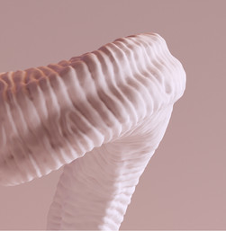3D bouquetin Corne