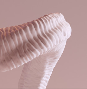 3D Ibex Cuerno