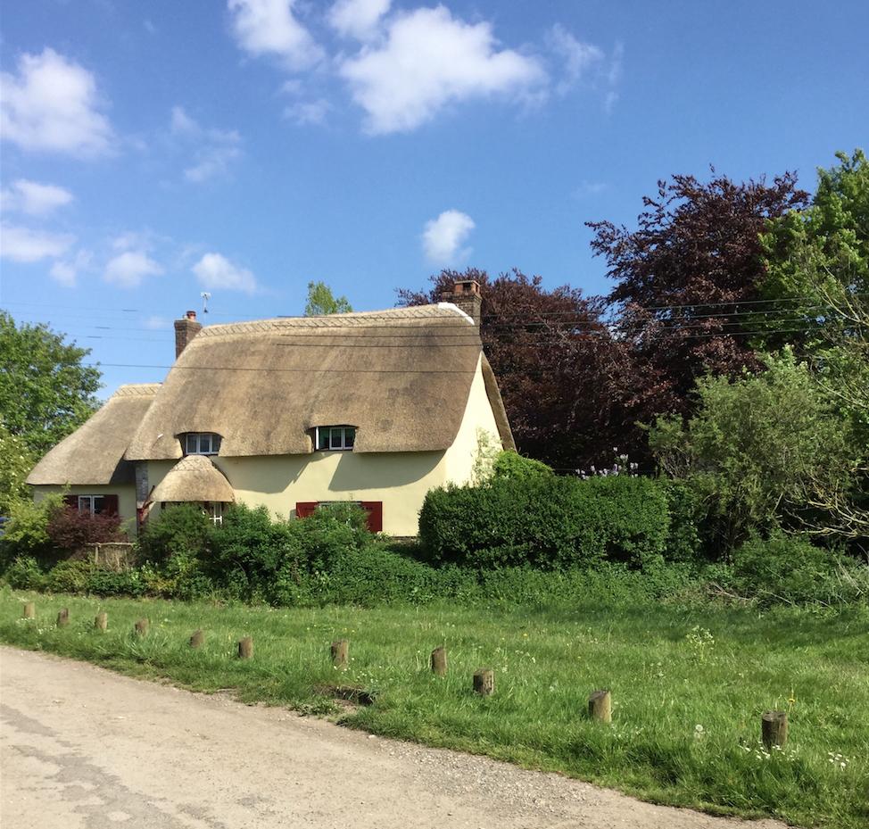 Shapwick Village 1