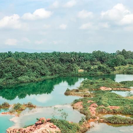 Frog Hill Penang.