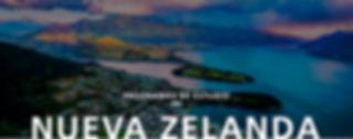 banner NZ estudio.jpg