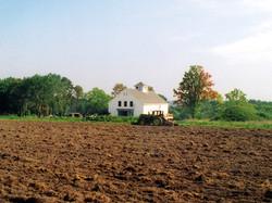 Community Harvest Project