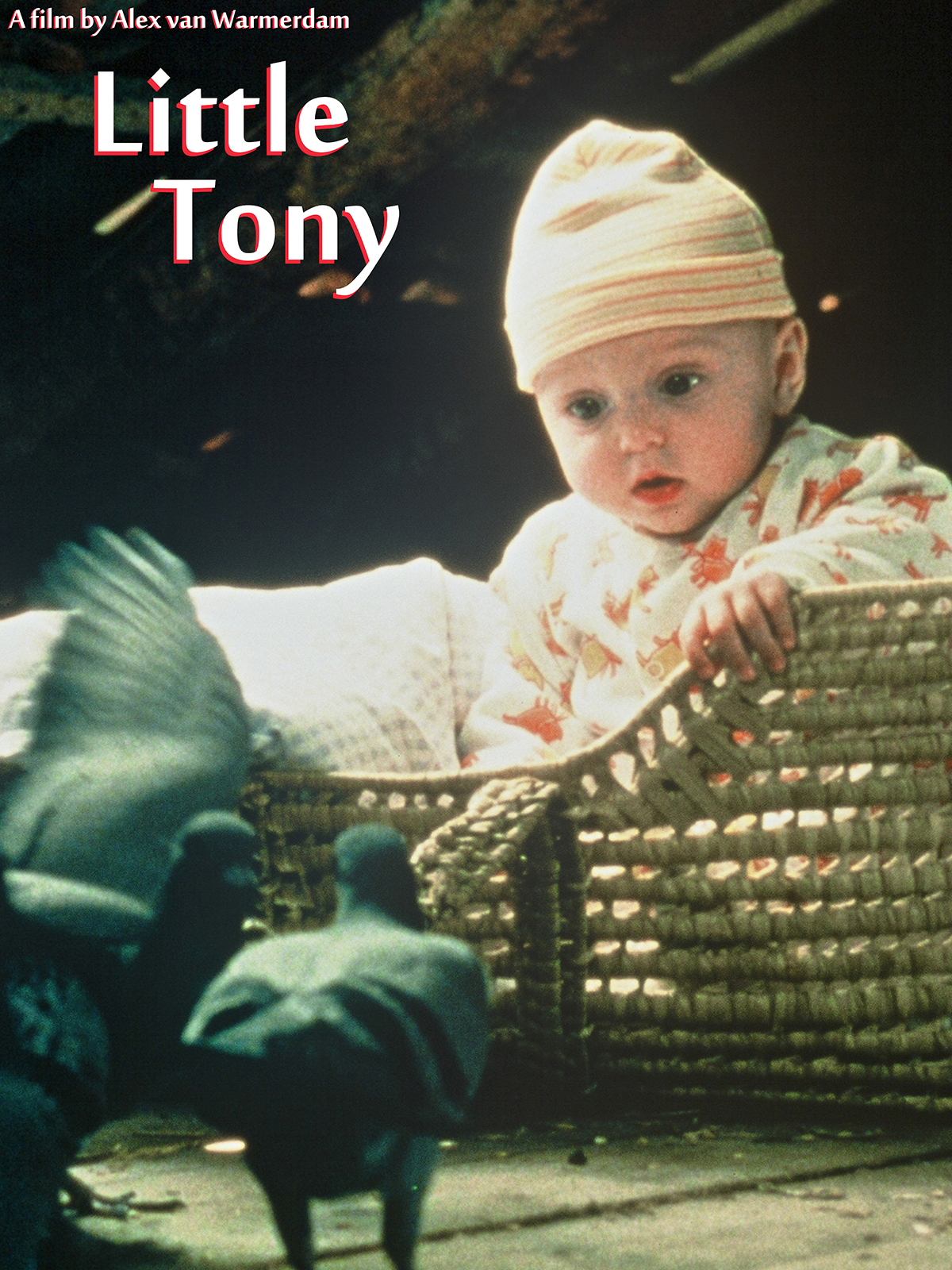 LITTLE TONY 1200X1600 ARTWORK AMAZON
