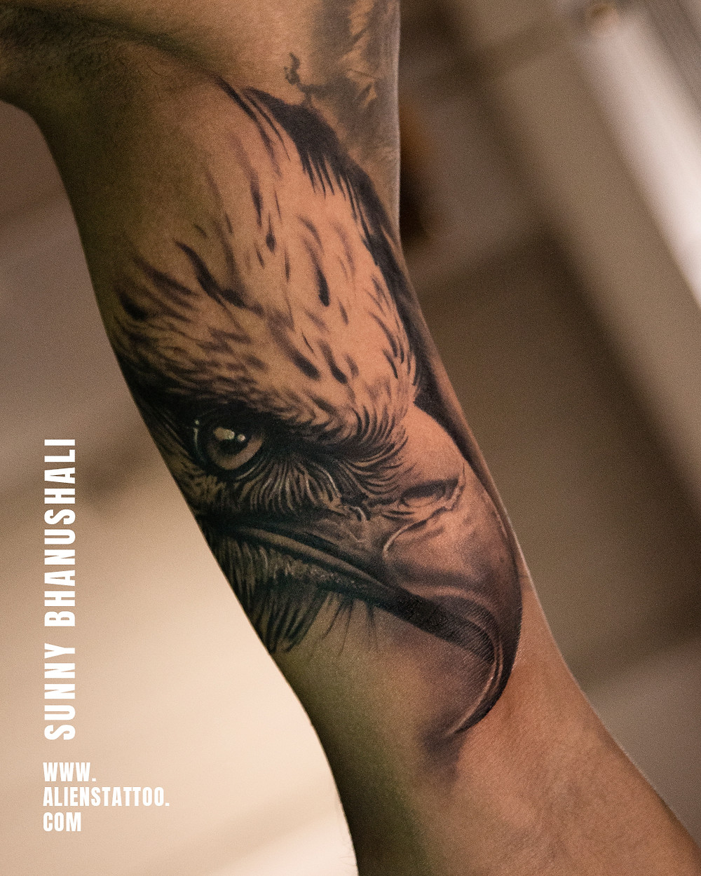 Eagle Tattoo - Animal Tatoo - Aliens Tattoo